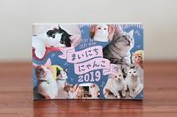 3年連続元旦の「まいにちにゃんこ」カレンダー、2019年の採用は!? - きょうだい猫と仲良し暮らし