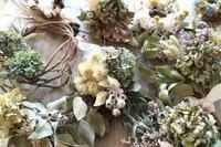 秋のアトリエイベント始まります - あなたらしい花あるくらしを共に描く 花色空間Vertu