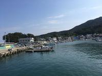 小島漁港でチヌ狙い! - 雨 ときどき 晴れ