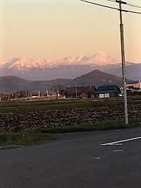 山は白くなった(-_-;) - わんわん・パラダイス