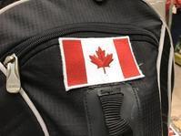 カナダと私 - フィレンツェのガイド なぎさの便り