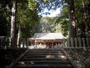 路傍の花、樹々の鳥(228) ~ 延喜式内神社へと続く小道を歩く ~ - 大屋地爵士のJAZZYな生活