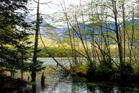 秋の上高地#3 - 長い木の橋