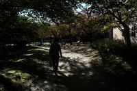色付きの夢を2018#04 - Yoshi-A の写真の楽しみ