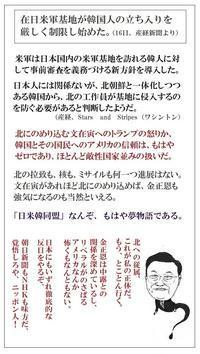 改憲に時期尚早は関係ない東京カラス - 東京カラスの国会白昼夢