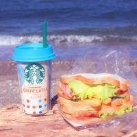 海岸の流木に座って一人テイクアウトランチ - poem  art. ***ココロの景色***
