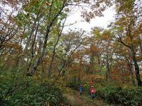 大万木山紅葉チェック④*滝見コースを下山* - 清治の花便り