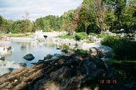 モルモン教会裏庭の池と多摩の公園の池 - 照片画廊