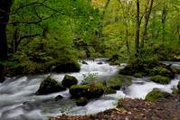 奥入瀬渓流と谷内温泉でイワナランチ! - うひひなまいにち