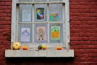 Pumpkin Pumpkin 2018 - Triangle NY
