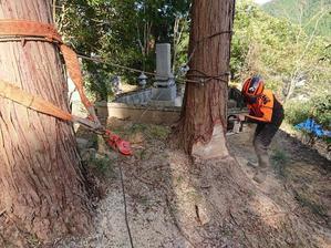 墓回りスカッと大作戦最終工程 - 自力施業型小規模森林所有者 奥山林業