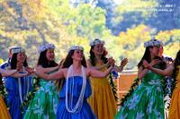 日比谷公園ガ-デニングショ-2018・・フラダンス - 自然のキャンバス
