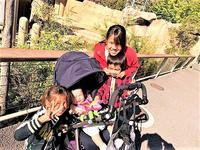 東山動植物園 - 自由空間の間取り