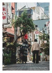 歩み - ♉ mototaurus photography