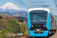 富士山と柿 - はじまりのとき