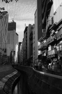 渋谷川 - S w a m p y D o g - my laidback life
