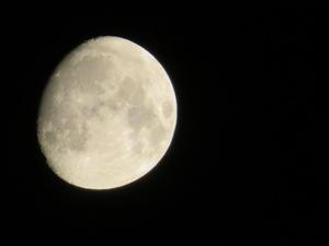 片見月 - 月のように風のように
