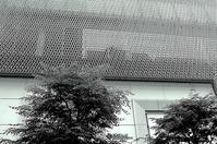 柿紅葉月 寫誌 ⑲JPG monochrome by X2 @Ginza - le fotografie di digit@l