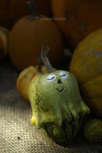 かぼちゃさん♪ - ぽとすのくずかご