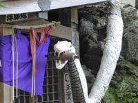 東京の白蛇さまにお参りしてきた♪上神明天祖神社には撫で白蛇様が♪ - ルソイの半バックパッカー旅