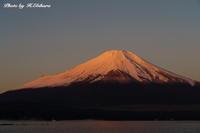 紅富士 - 写真家 海老原 勇人