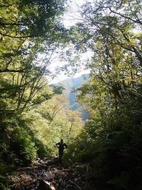 坂内・大谷川支流ニシマタ谷…爽やか沢登り - 山にでかける日