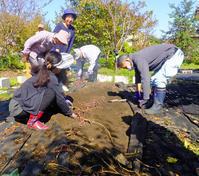 芋掘り10月22日(月) - しんちゃんの七輪陶芸、12年の日常