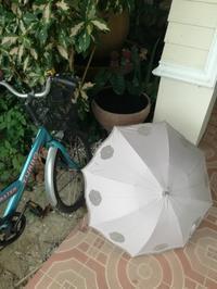 日傘とメダカと自転車 - チェンマイUpdate