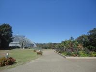 京都府立植物園 - 健康で輝いて楽しくⅡ