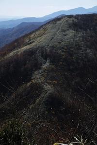 冬枯れの手前で・・・南面白山 - tabi & photo-logue vol.2