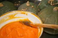 かぼちゃ収穫 - ととのブログ