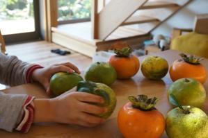 実りの秋 - いえづくり現場ノート(いちかわつくみ建築設計室のブログ)