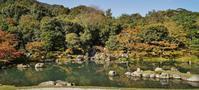 天龍寺・曹源池庭園を方丈から眺めてみる - たんぶーらんの戯言