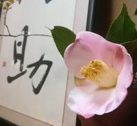 花梨の香りと西王母… - 侘助つれづれ