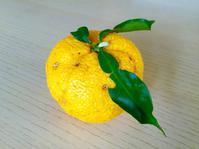間もなく柚子茶の季節です - 今日も食べようキムチっ子クラブ (料理研究家 結城奈佳の韓国料理教室)
