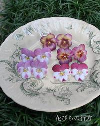 小さなビオラがまた咲きました^^染め色を変えて - 布の花~花びらの行方 Ⅱ