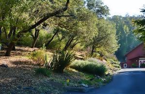 Hello from Marin County California !