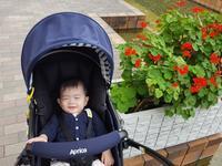 まったり公園をお散歩 - れおママ育児日記