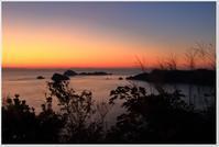 薄暮の時間帯 - ハチミツの海を渡る風の音