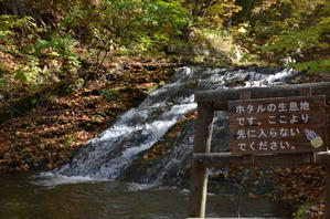 西岡水源地公園 -