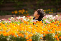 ちびっ子兄弟と楽しむ 秋の彩りのフラワーパーク「花ファンタジア」 - Full of LIFE