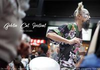 神楽坂化け猫フェスティバル 2018 を sony α7RIII + SEL55F18Z 一本勝負 - 東京女子フォトレッスンサロン『ラ・フォト自由が丘』-写真とフォントとデザインと現像と-