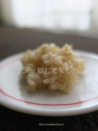 玄米、はじめました。 - yamatoのひとりごと