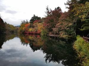 最近のインスタ * 食欲の秋(笑) - ぴきょログ~軽井沢でぐーたら生活~
