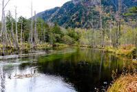 秋の上高地#5 - 長い木の橋