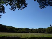 東京で一番広い空♪代々木公園にサッカー場が建設されるって! - ルソイの半バックパッカー旅