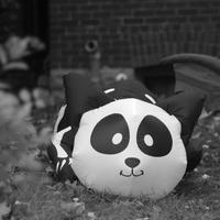 Happy Halloween(モノクロ編) - ∞ infinity ∞
