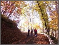 秋の紋別岳 - 好い加減に過ごす2