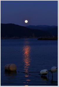 十六夜の月 - ハチミツの海を渡る風の音