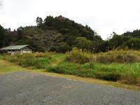 冬にむかって - 千葉県いすみ環境と文化のさとセンター